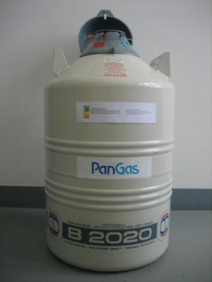 Flüssigstickstoff Behälter